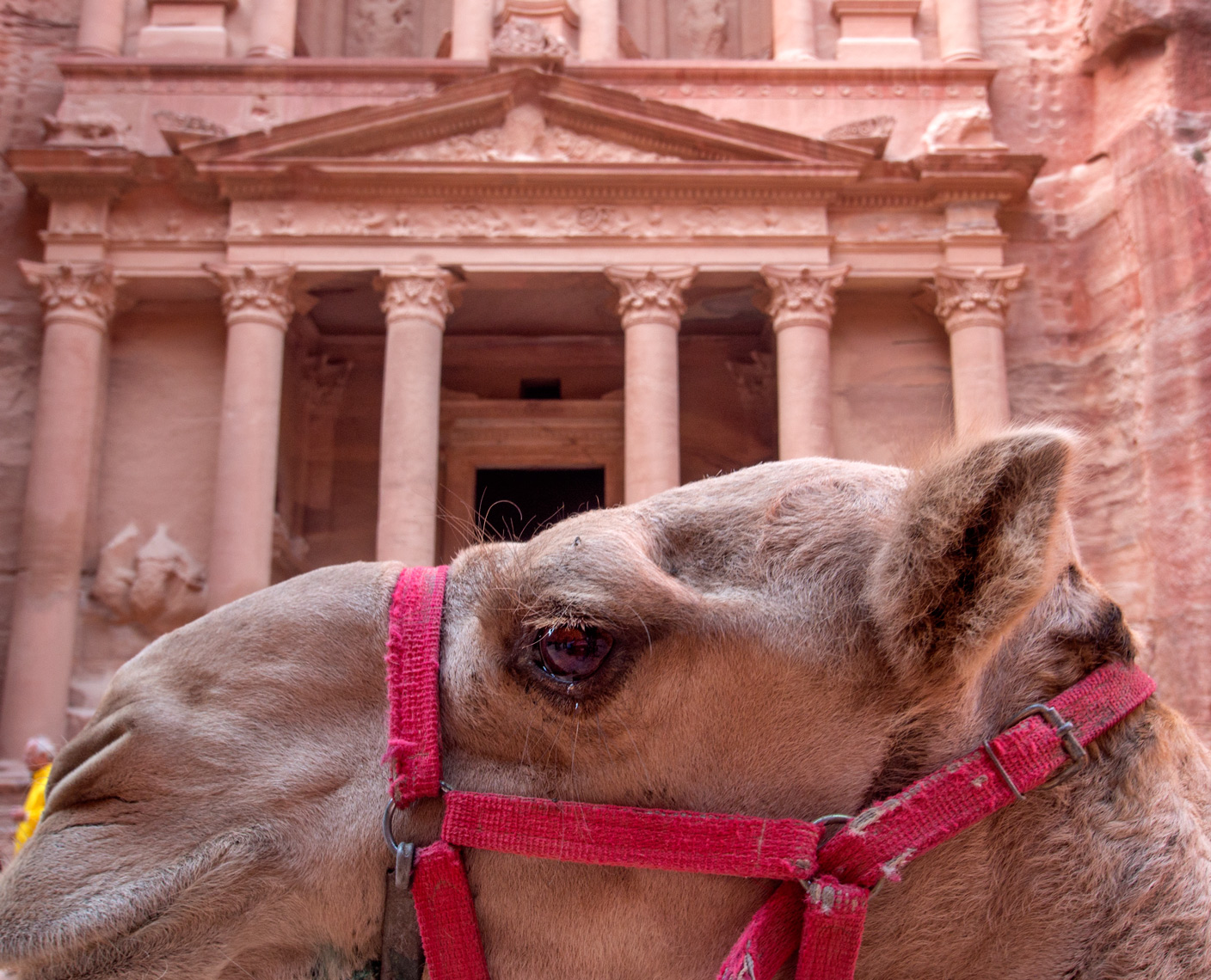 Petra, Jordan Treasury and camel