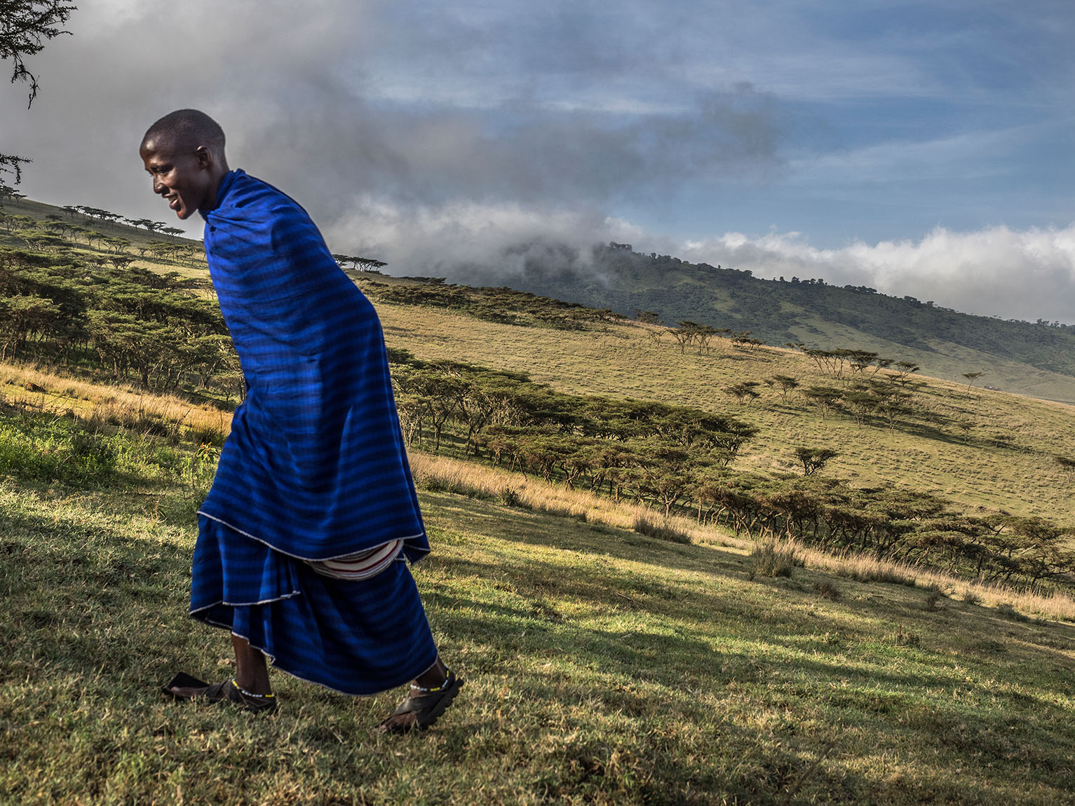 Blue Maasai in Highlands