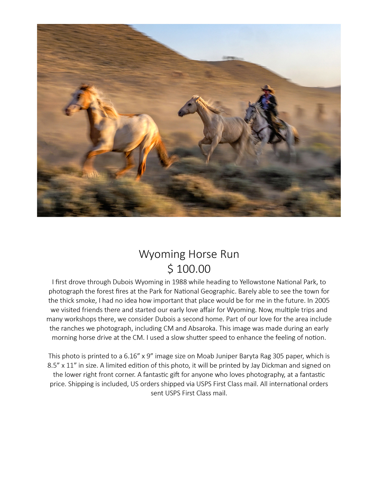 Wyoming Horse Run